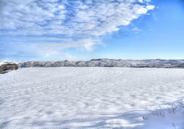Winter_II