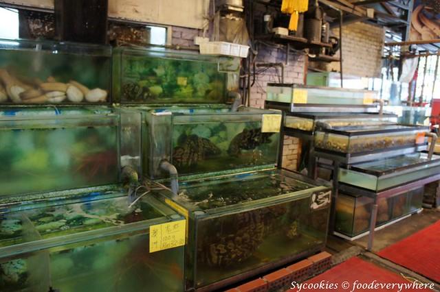 8.restaurant fook hin  bah kut teh equine park (12)