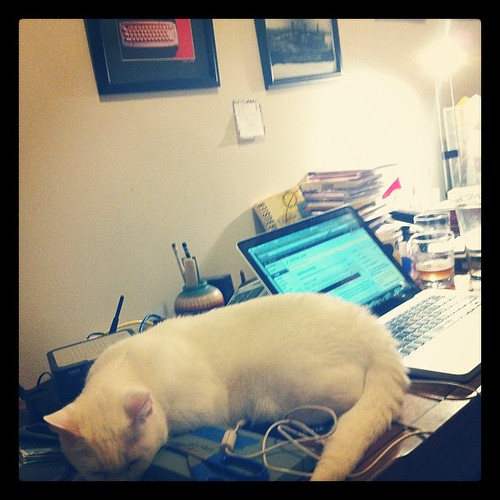 Crackers thinks hurricanes and updating your blog are boring.