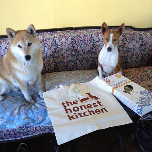Thank you #TheHonestKitchen!