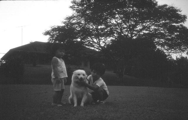 1981 - Me, dog, Shan at Pamol