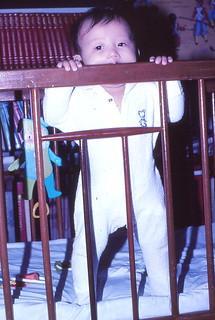 1982-Beaver Leon at it again