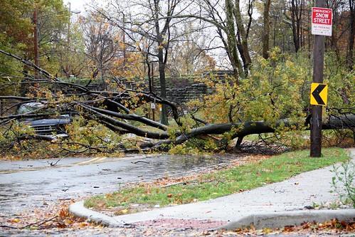 Hurricane Sandy's Wrath by Thom Sheridan