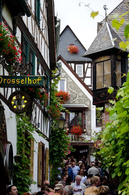 Europe2_Rhine__DAD2033