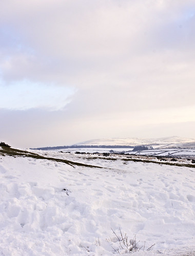 dartmoor_snow_jan2013 by BeccaG