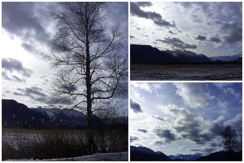 Murnauer Moos u Wetterstoa 2013-01-30
