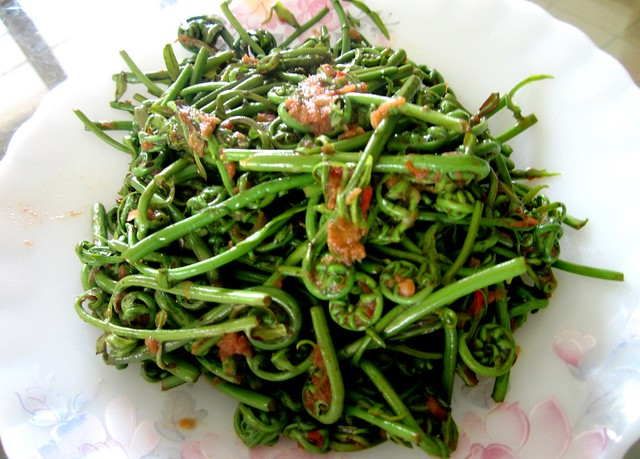 Midin with udang kering