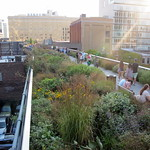 Natural Beauty on the High Line