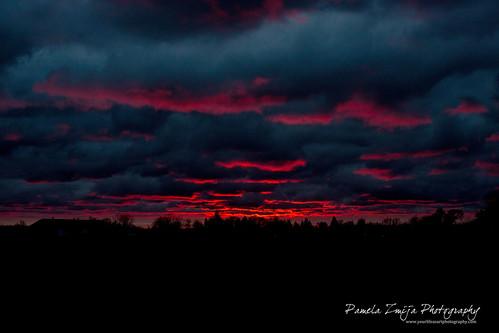 20121027-328C6008-WM by {Pamela Zmija Photography}