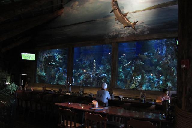 3 Tropical Fish Shop