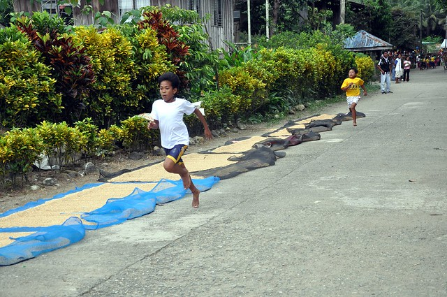 School Meet Run