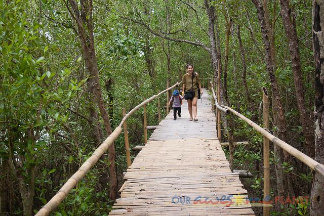 Bakhawan Eco-Park-20.jpg