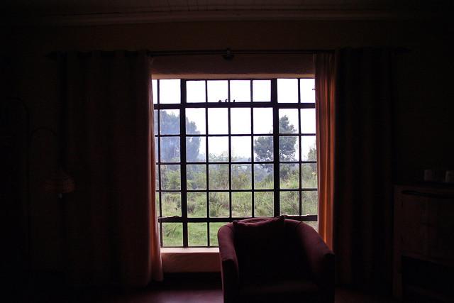 window at Sabyinyo Silverback Lodge