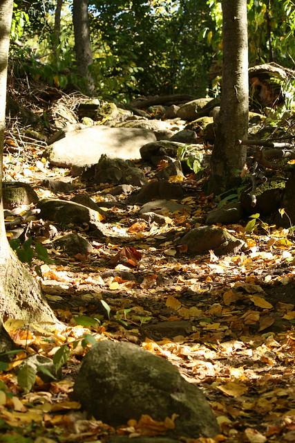 a little rocky along the way