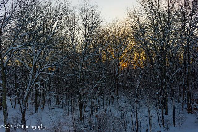 2012_Dec_30_Snow_004