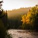 Cabin's Creek