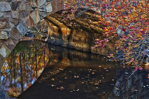 Fall under Davies Bridge by Jeka World Photography