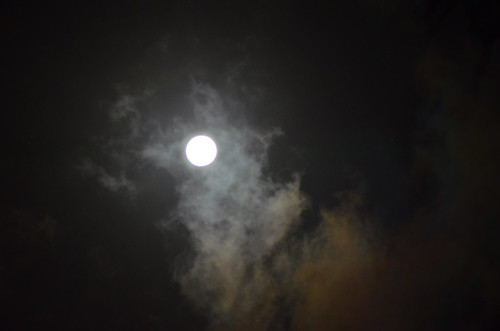 moon gazing1