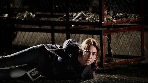 Forbrydelsen III - Sarah Lund