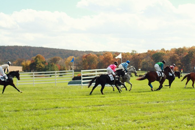 Fall Gold Cup 2012