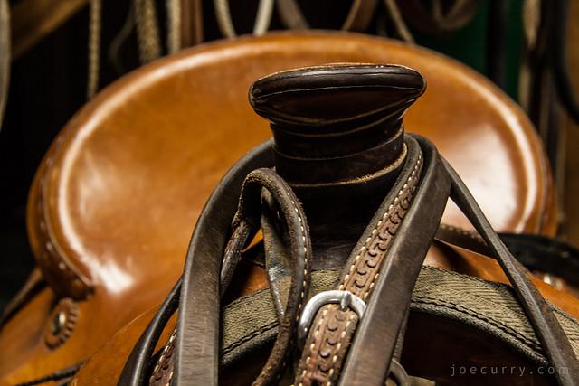 Saddle