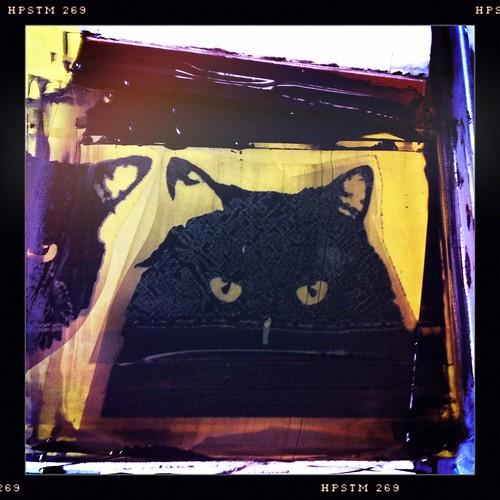 printing: somebody's watching me