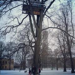 Aivan mahtava puumaja Västeråsissa