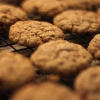 Kathleen's Applesauce Oatmeal Cookies with Cinnamon Chips
