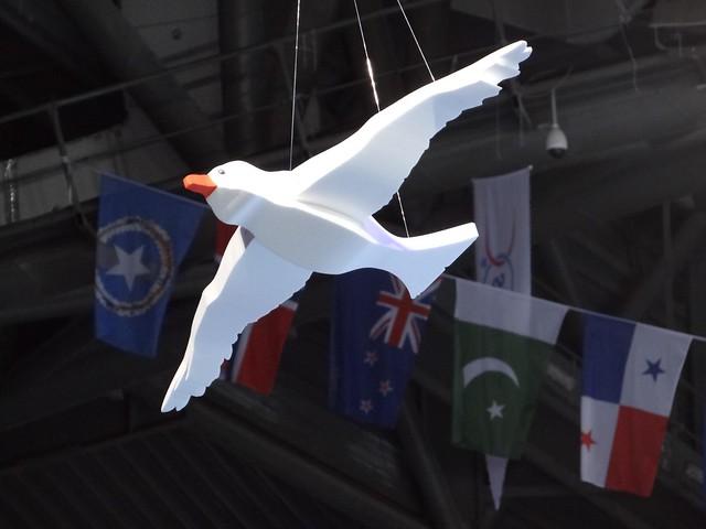 A bird over Istanbul 2012