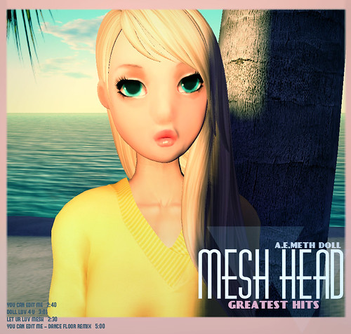 [ a.e.meth ] Doll Mesh Head