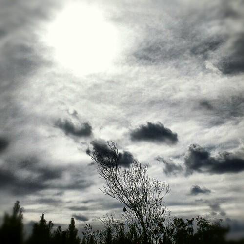 early december sky. #sun #sky #clouds #trees #nature #fl #florida #jax #jacksonville #904 #instagood #photooftheday