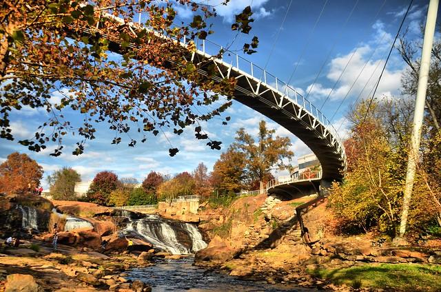 Reedy Falls 5