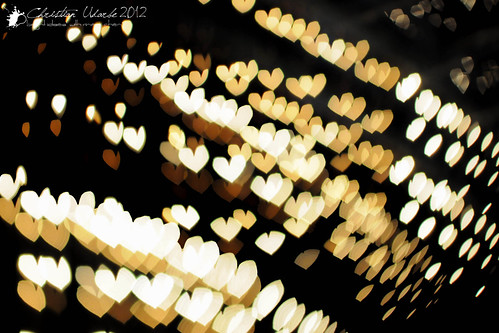 I Heart Christmas Lights by Bright Ideas with Chan Udarbe