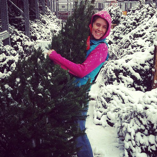 Gots my Christmas tree!