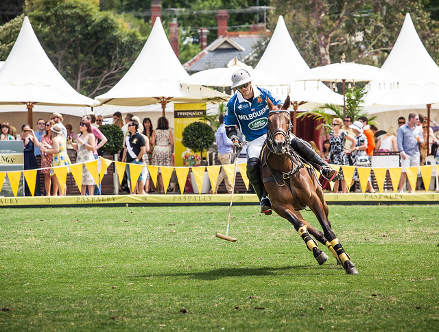 Paspaley Polo In The City