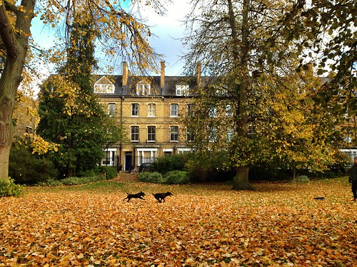 Autumn in Oxford