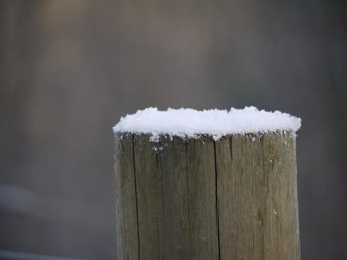 RSiegel_Week48 - Winter