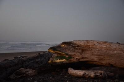 sea serpent on the Oregon Coast