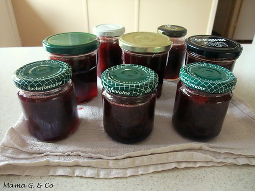 Homemade Jam (4)