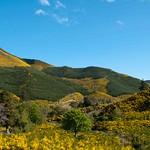 Nueva Zelanda, Isla Sur 13