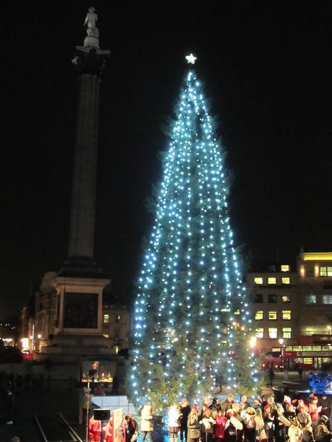 Trafalgar Square Christmas Tree 2012