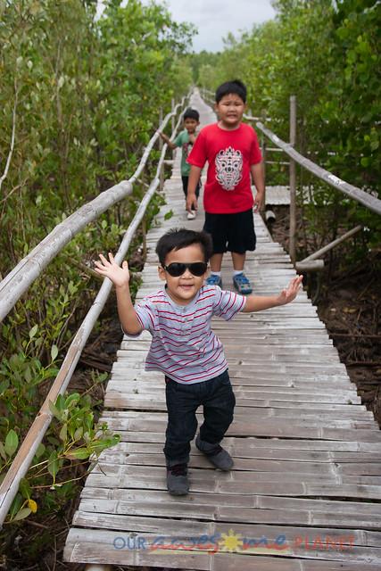 Bakhawan Eco-Park-44.jpg