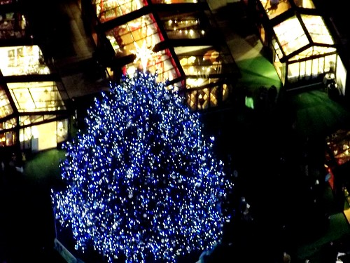 The Bryant Park Christmas tree -- the view from 41 storeys up high