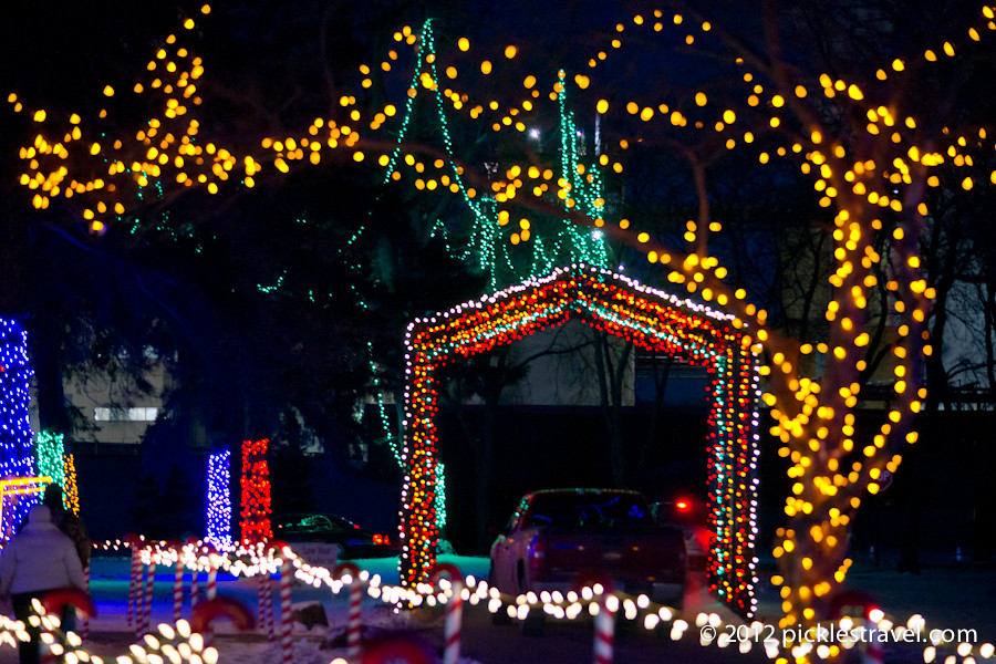 Mn Zoo Christmas Lights