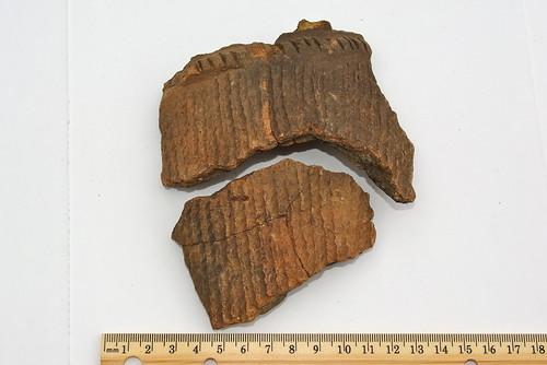 Jomon potsherds (1)