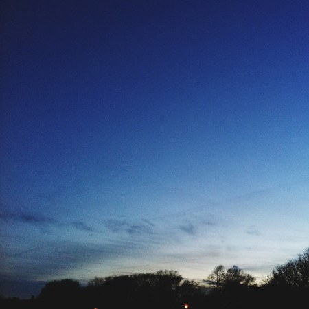 Queen Square Treeline / Version 2 Color - iPhone Photography Project #iPP
