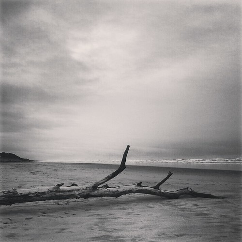 the Oregon coast by davidkellerphotos