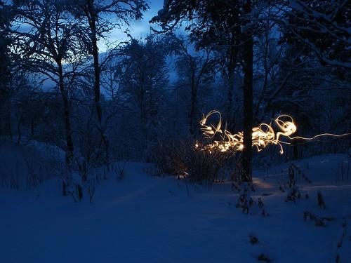 Что то в лесу by setyelina