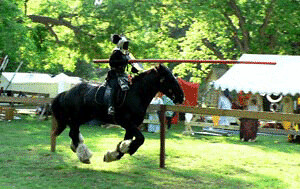 Image from Ravenswood School of Jousting.