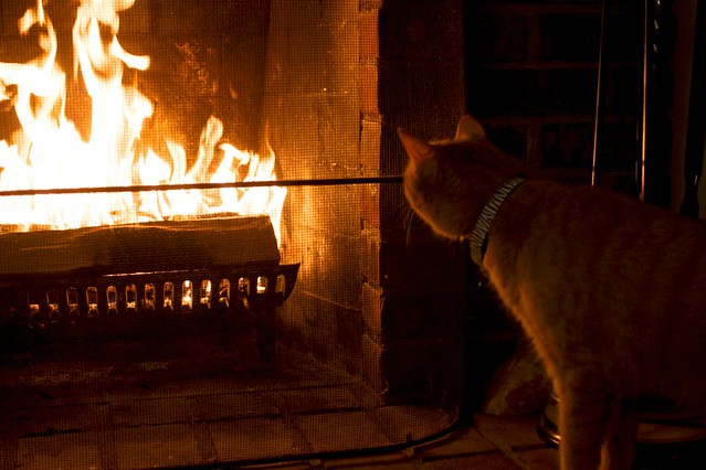 Beso Watches the Fire